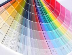 многообразие возможных цветов для краски