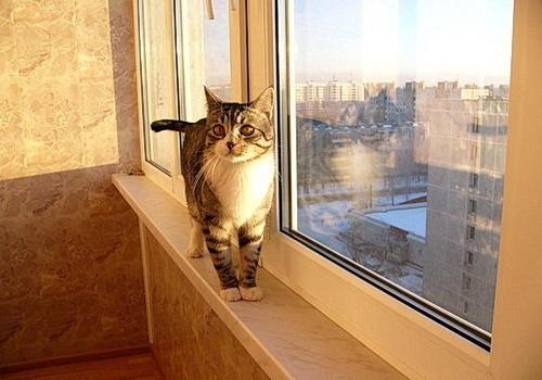 отделка балкона пробкой 3
