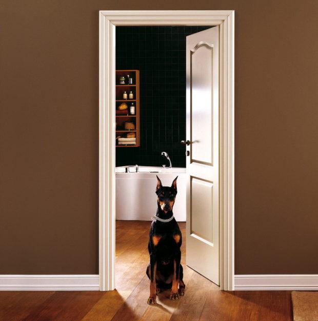 Наличники для межкомнатных дверей: 5 советов по выбору наличников