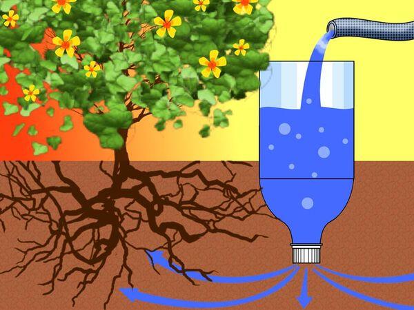 5 советов, как сделать капельный полив своими руками