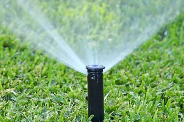 8 советов по организации системы полива на даче