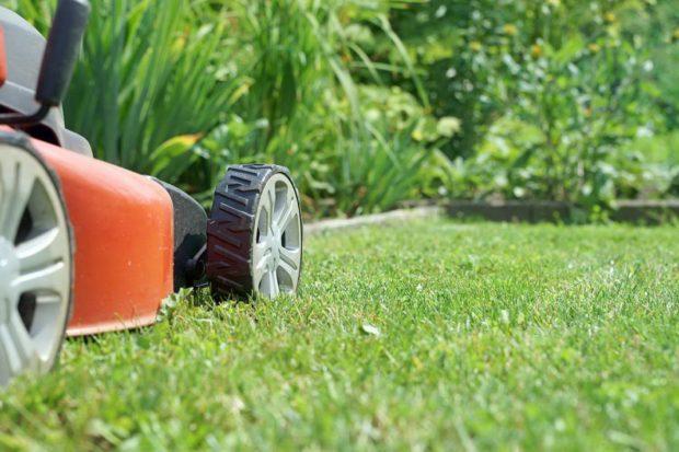 Стрижка газона: 7 важных правил
