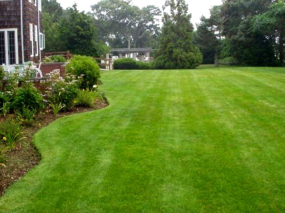 Как укладывать рулонный газон своими руками фото 594