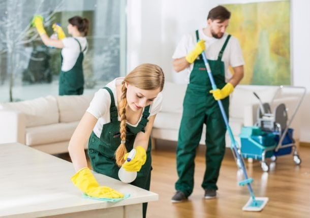 Как избавиться от мошек в квартире: ТОП-26 средств