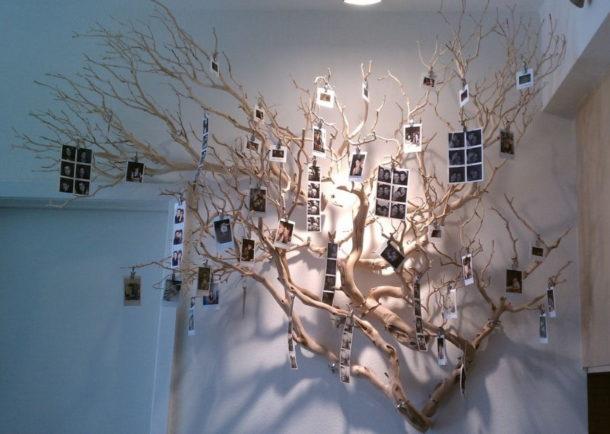 Размещение фотоснимков на декоративном дереве