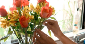 9 советов, как сохранить букет цветов: упаковка, уход, подкормка