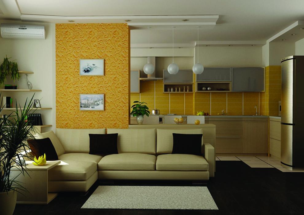 квартира студия кухня 3