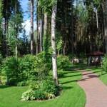 лесной  стиль в ландшафтном дизайне 3
