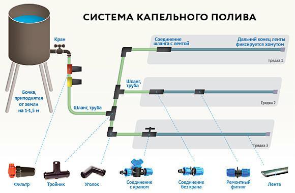 Cоветы по выбору и монтажу системы полива теплицы (5 вариантов орошения)