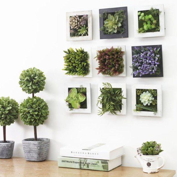Вертикальный сад на стене