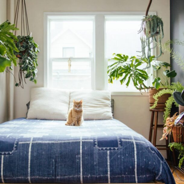 Для маленьких спален идеальны подвесные кашпо, для больших - напольные кадки