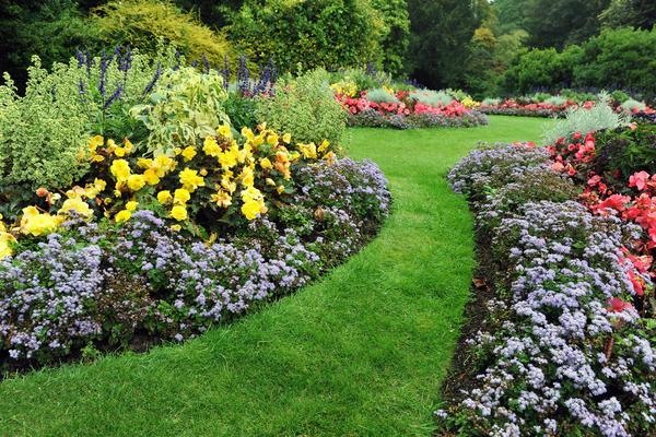 садовая дорожка из травы