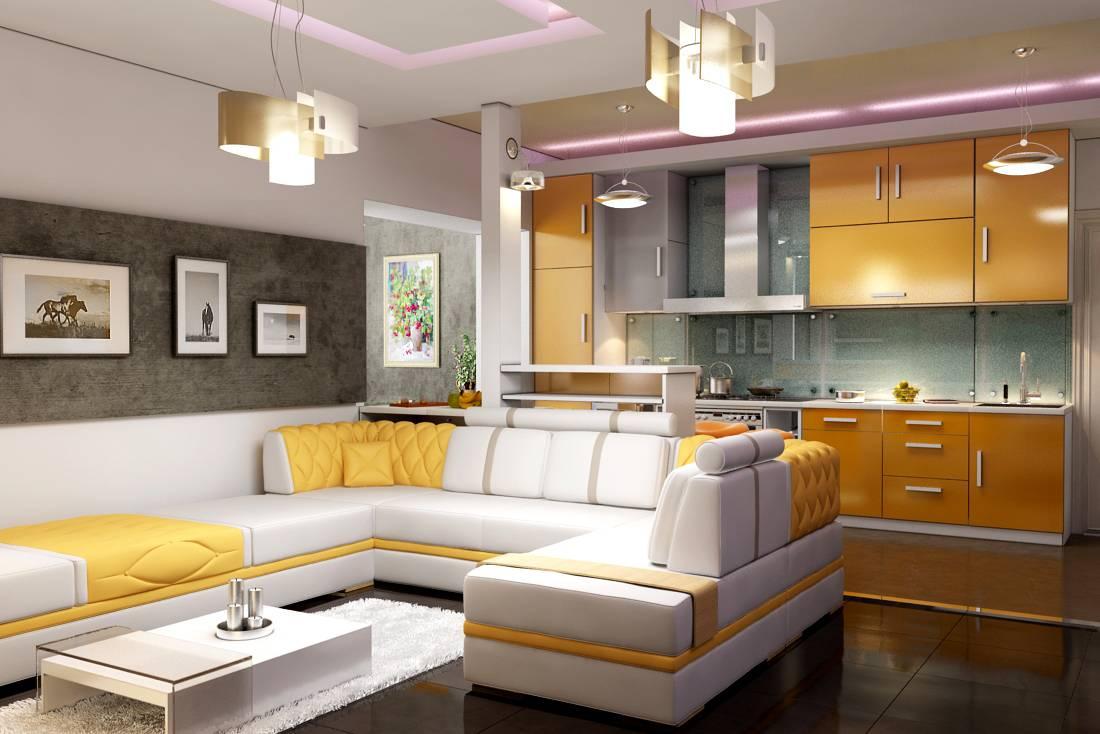 совмещенная кухня и гостиная 2