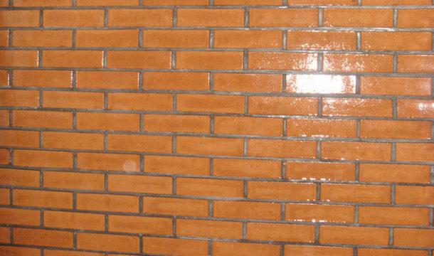 Отделка стен кирпичного гаража лаком