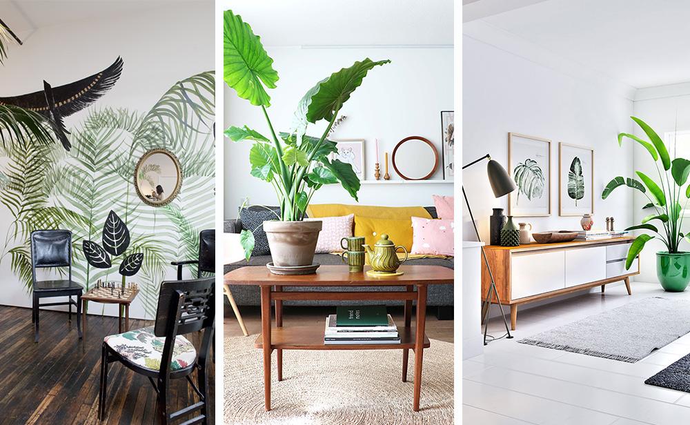 Тропический стиль в интерьере - 6 советов по созданию + фото