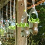 вазоны для цветов  из пластиковых бутылок 6