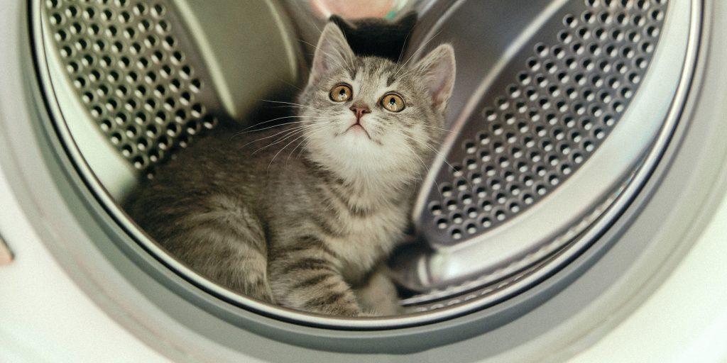 7 способов, как почистить стиральную машину от запаха, грязи и накипи