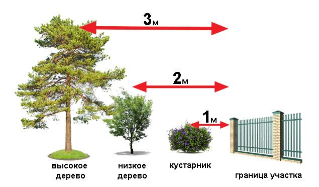 забор для участка требования 2