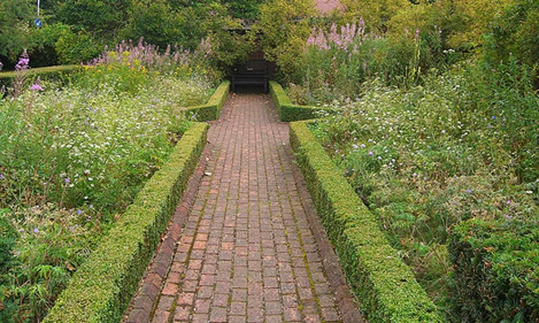 зеленый бордюр для садовых дорожек